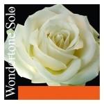 Pirastro-Wondertone-Solo-violin-strings-150x150