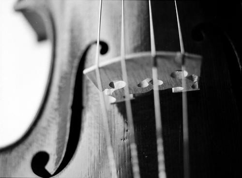 Violin-Bridge-Gaps